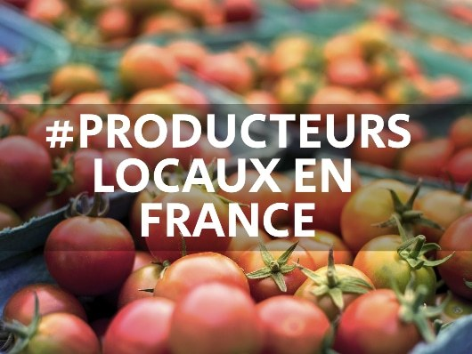 Les producteurs locaux et marketing digital